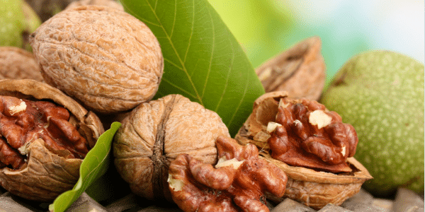 The Anti-Aging Benefits of Walnuts 1